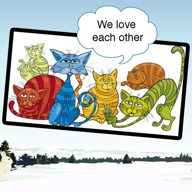 Multi-cat Households