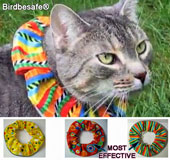Noticeable, brightly coloured, cat collar protects birds from cat predation
