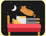 Should you be sharing your bed with your favorite feline? Infographic.