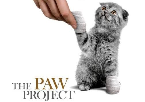 Paw Project - Utah