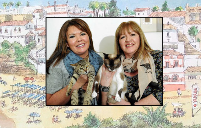 Rescue cats in the Algarve rehomed in Scotland