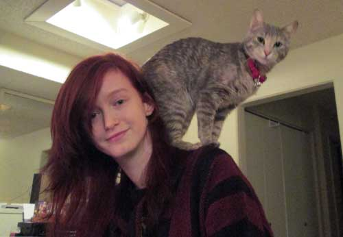 ziggy cat companion
