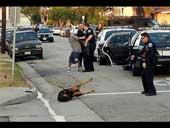 Police kill dog
