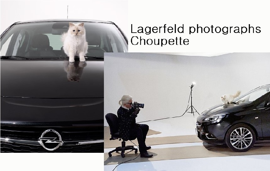 Largerfeld photographs Choupette