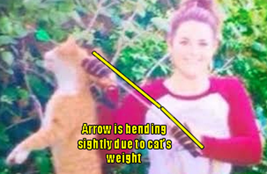 Slightly bent arrow