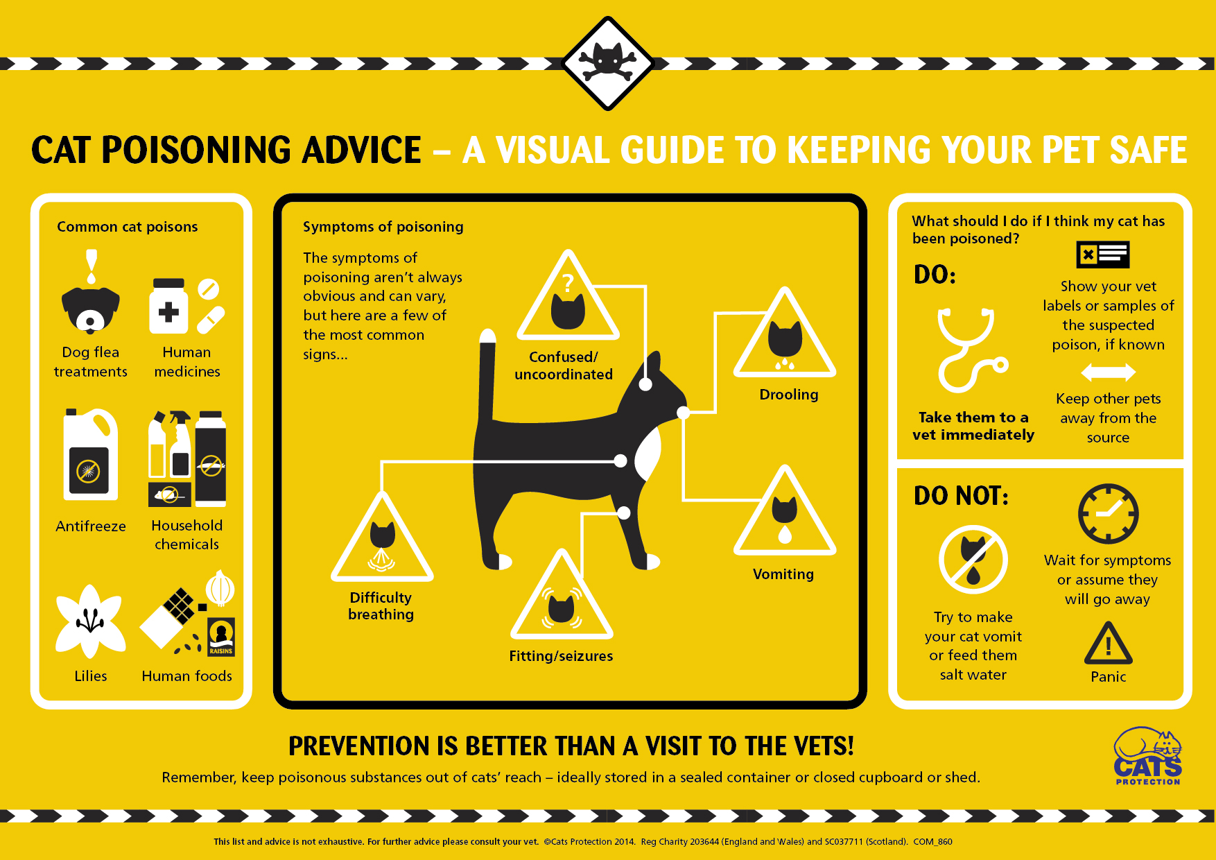 cats protection poisoning infographic