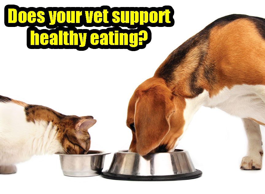 Does your vet support healthy eating?