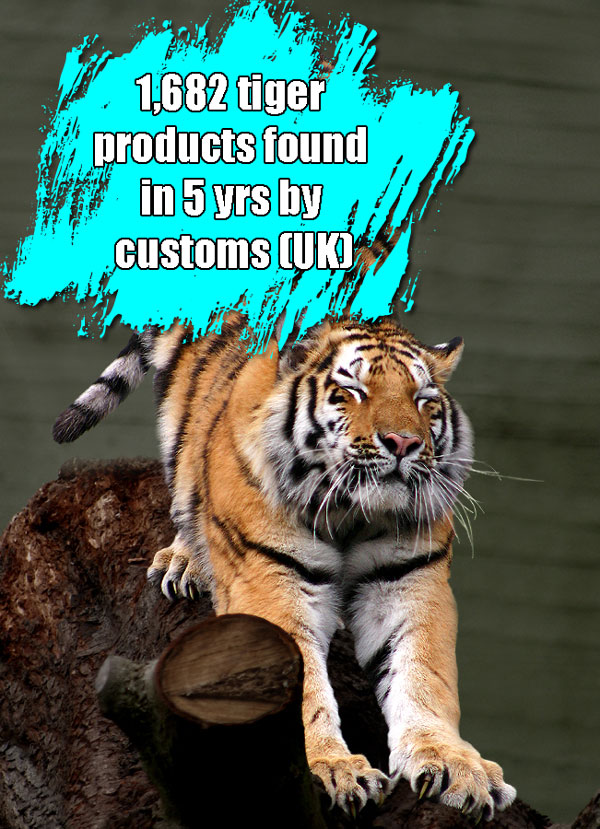 Tiger products traded in UK