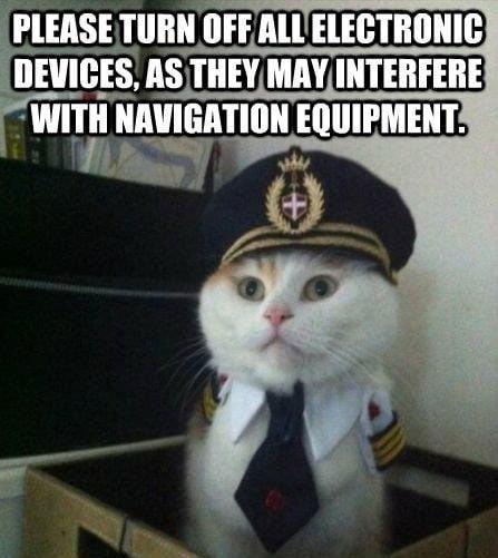 cat-navigation