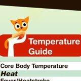 Cat temperature