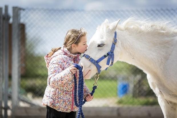 Horses help pupils