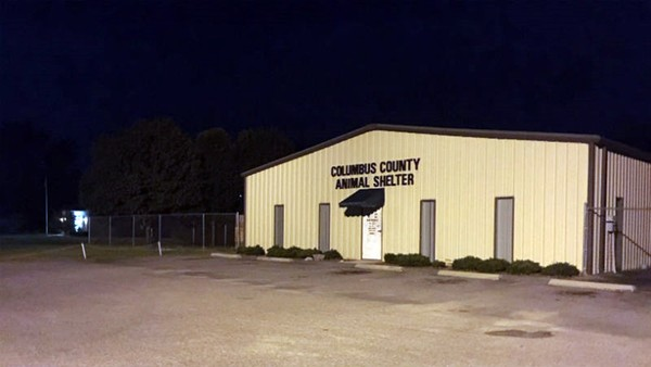 Columbus County Animal Control
