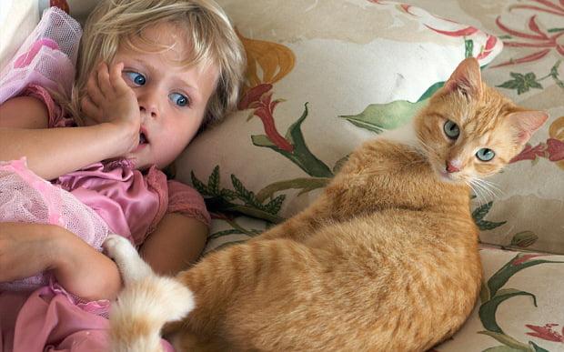 toxoplasmosis and kids