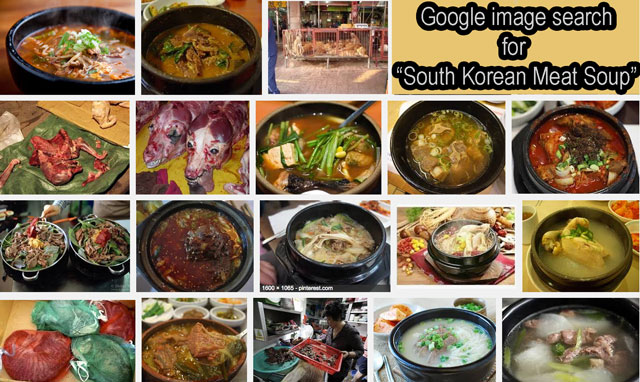 South Korean meat soup