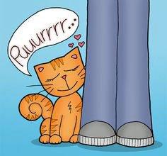 Cat's purr heals