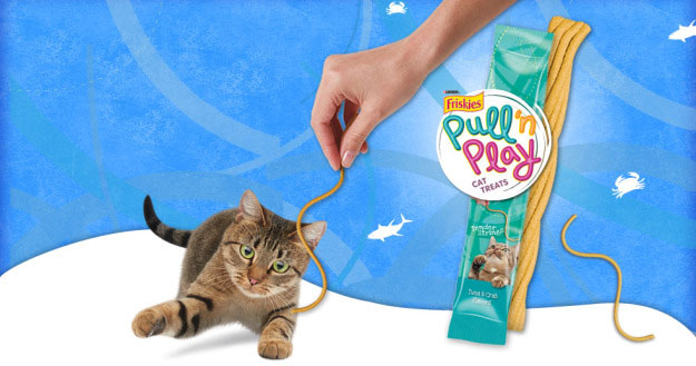 Edible string toy for cats