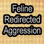 Feline redirected aggression