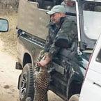 Leopard attack ranger