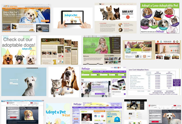 Pet adoption websites