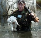 cat rescue hurricane