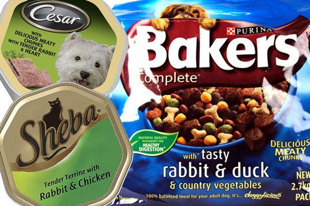 Pet food montage