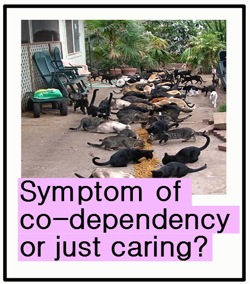 Co-dependency caring for feral cats?