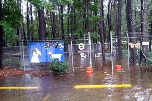 SC Floods