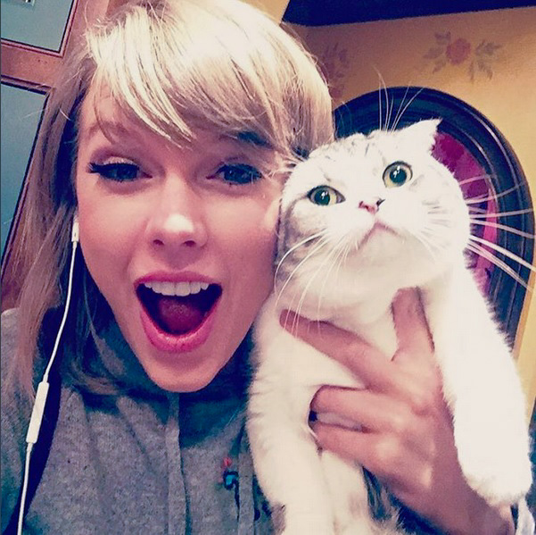 Taylor Swift selfie with her cat Meredith
