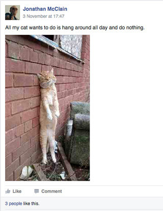Animal cruelty Facebook page