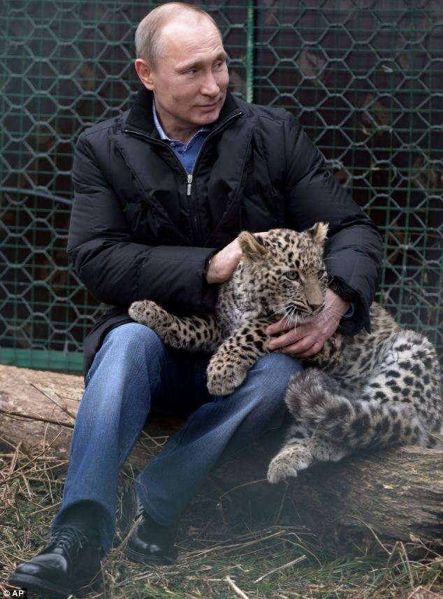 Putin with Persian leopard