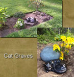 Cat Graves