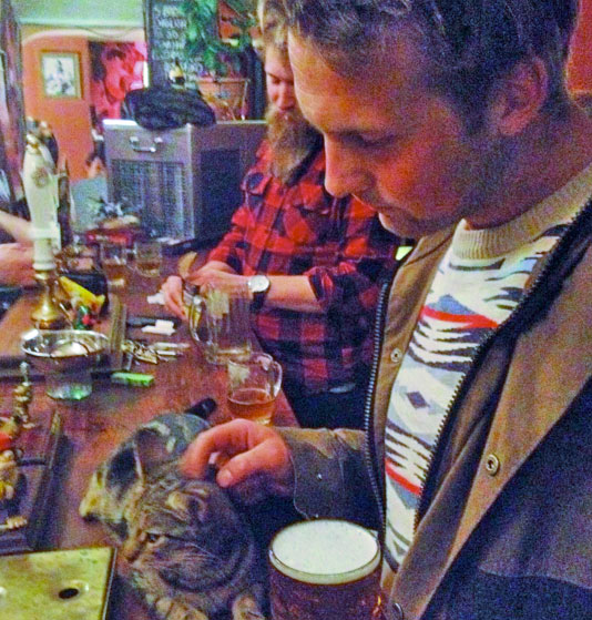 Cat Pub, Bristol