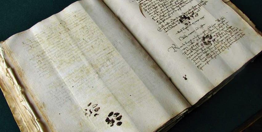 Cat paw prints across 15th century document
