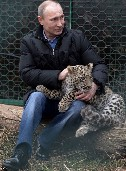 Putin and Persian leopard