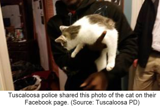 Tuscaloosa police and cat