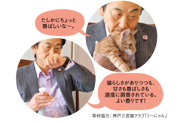 Domestic cat's forehead scent