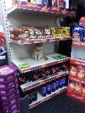 Ollie, a supermarket cat minding his own business.