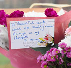 Bus stop cat floral tribute