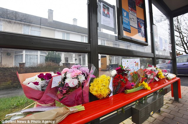 Floral tributes to bus stop cat