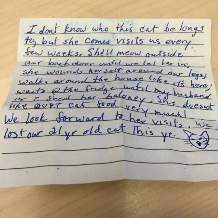 Note left on cat visiting another home