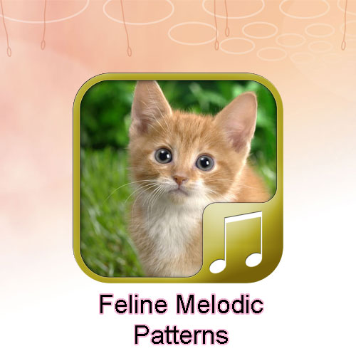 Cat melodic patterns