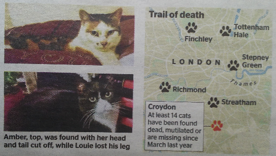 Cat victims of the Croydon Ripper