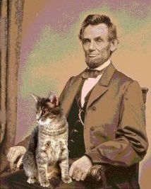 Lincoln with tabby cat