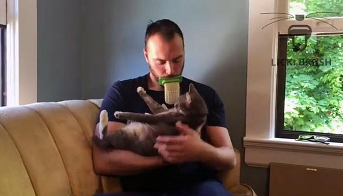 a cat licking device