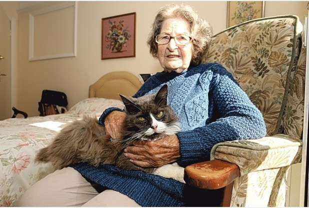cat reunited with elderly owner