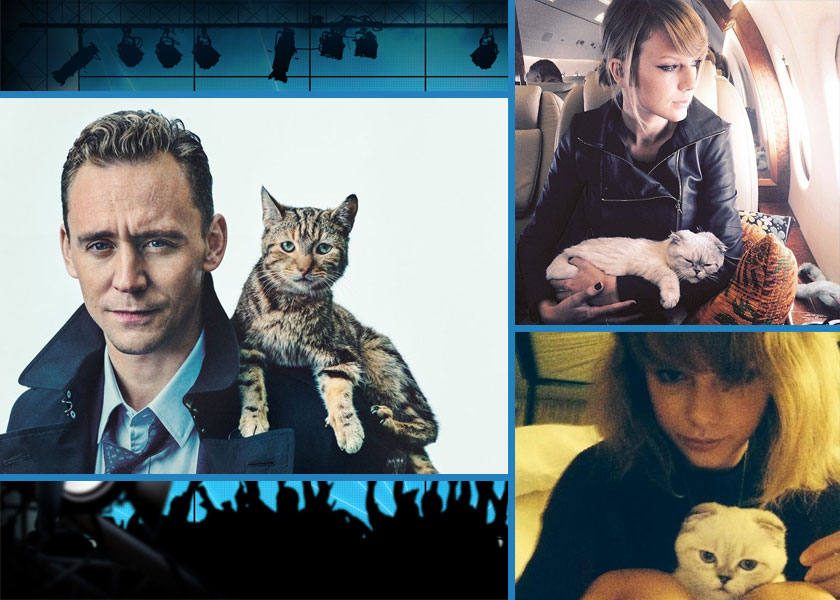 Hiddleston and Swift with their cats