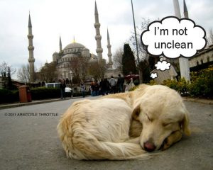 Dog are unclean according to muslims