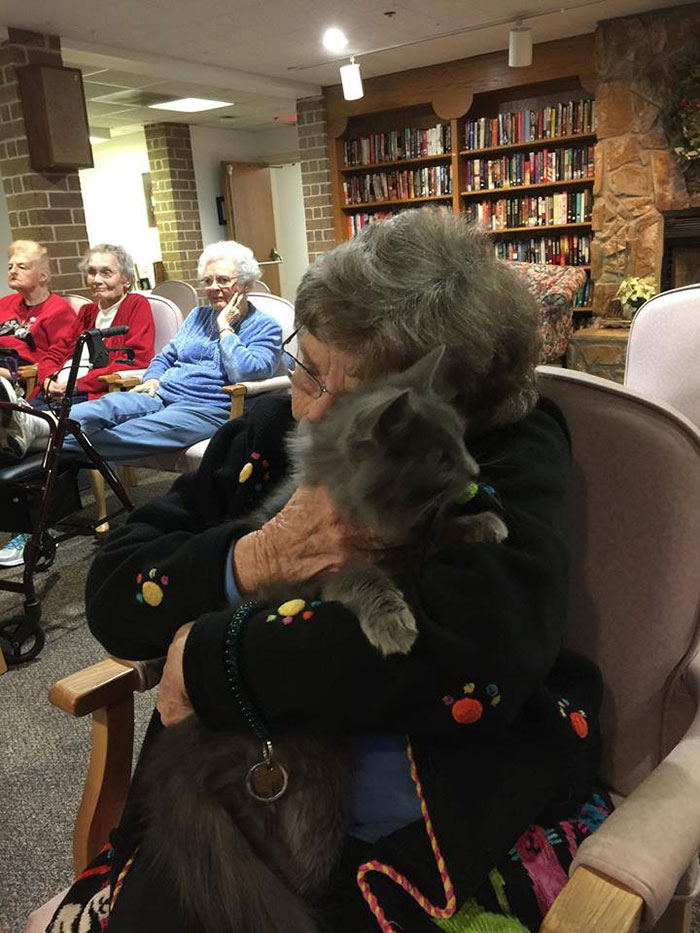Elderly cats with elderly people