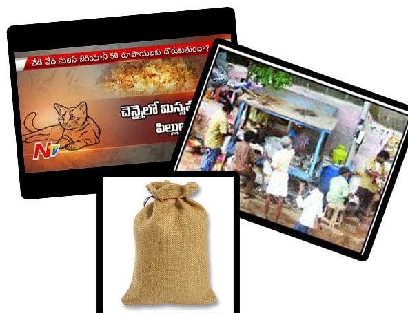 Cat meat India