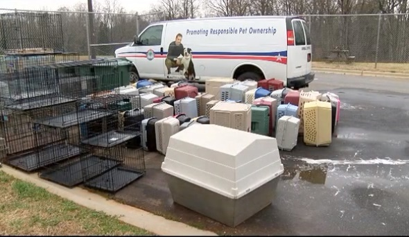 90 cats taken from Mooresville home in March 2016